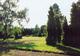 Ogrody i park Pomologii słynęły z egzotycznych drzew, krzewów i kwiatów. Kolekcja gromadziła gatunki z Afryki, Azji obu Ameryk.  foto: Krzysztof Duniec