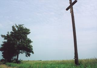 Krzyż Gallusa  foto: Krzysztof Duniec