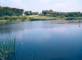 : Pośród Winowskich Wzgórz rozciągają się bogate w ryby stawy  foto: Krzysztof Duniec