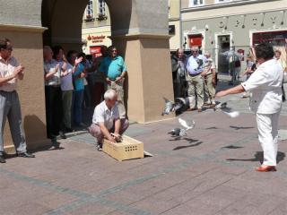 Symboliczne wypuszczenie gołębi