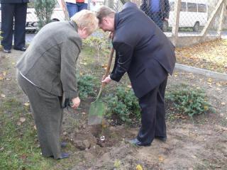 Sadzenie drzewka przyjaźni